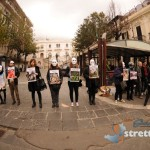 Flash Mob agnello (1)