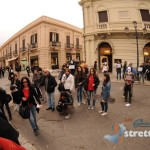 Flash Mob agnello (5)