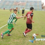 reggina vigor (2)