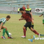 reggina vigor (5)