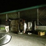 reggio incidente autostrada (4)