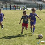 Torneo Falcomatà (7)