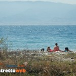 spiaggia pet friendly di catona (13)