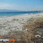 spiaggia pet friendly di catona (2)