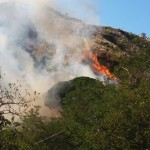 Incendio Messina 7