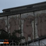 murales-graffiti-messina-7