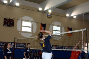 volley_palacsi-gallina