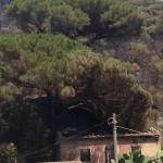 incendio a messina san michele (2)