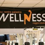 palestra wellness